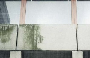 Pulizia Criogenica delle facciate degli edifici
